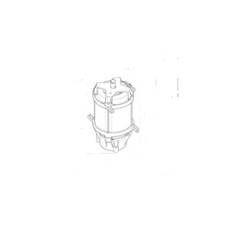 pompe moteur pour nettoyeur haute pression alto poseidon. Black Bedroom Furniture Sets. Home Design Ideas