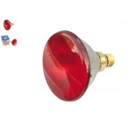 Lampe Infrarouge E27 230V 122 X 136 mm